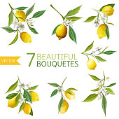 Vintage Lemons, Flowers and Leaves. Lemon Bouquetes. Watercolor Style