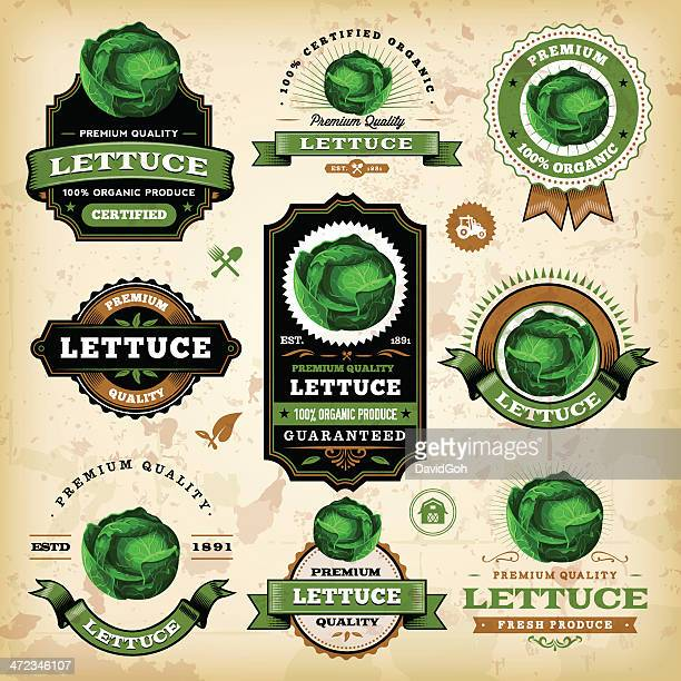 vintage lettuce labels - white cabbage stock illustrations, clip art, cartoons, & icons
