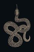 Vintage line snake