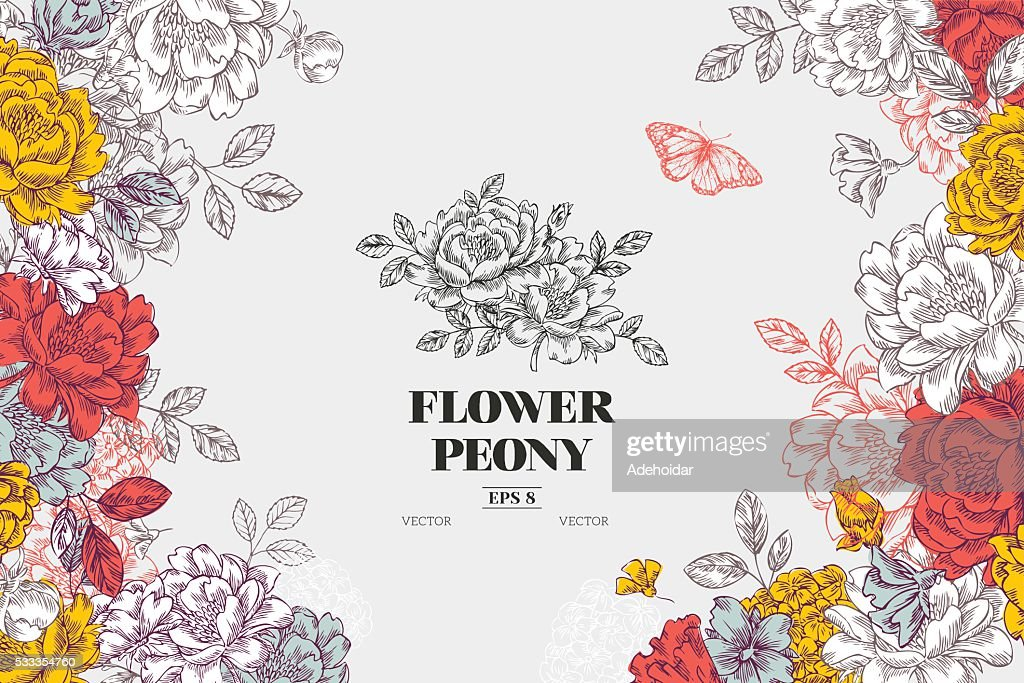 Vintage peony flower background. Flower design template. Vector illustration
