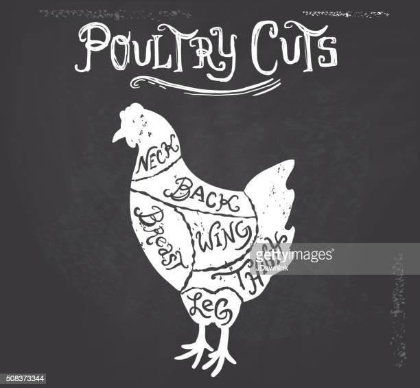 illustrations, cliparts, dessins animés et icônes de poulet morceaux de boucherie diagramme vintage sur fond texturé - boucherie