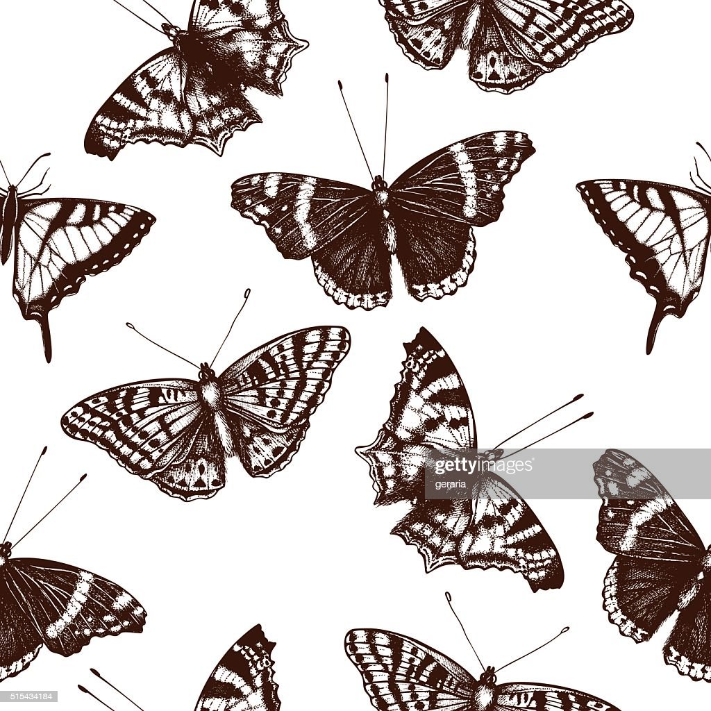 Vintage seamless pattern with  butterflies illustration.
