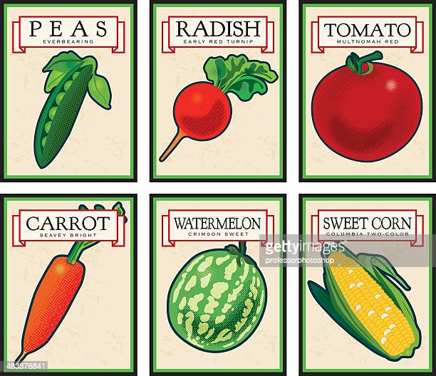 vintage seed packets - green pea stock illustrations