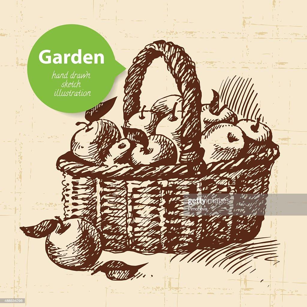 Vintage Sketch Garden Background Hand Drawn Design Vector Art ...