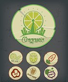 Vintage stickers with logotype and useful qualities of organic foods