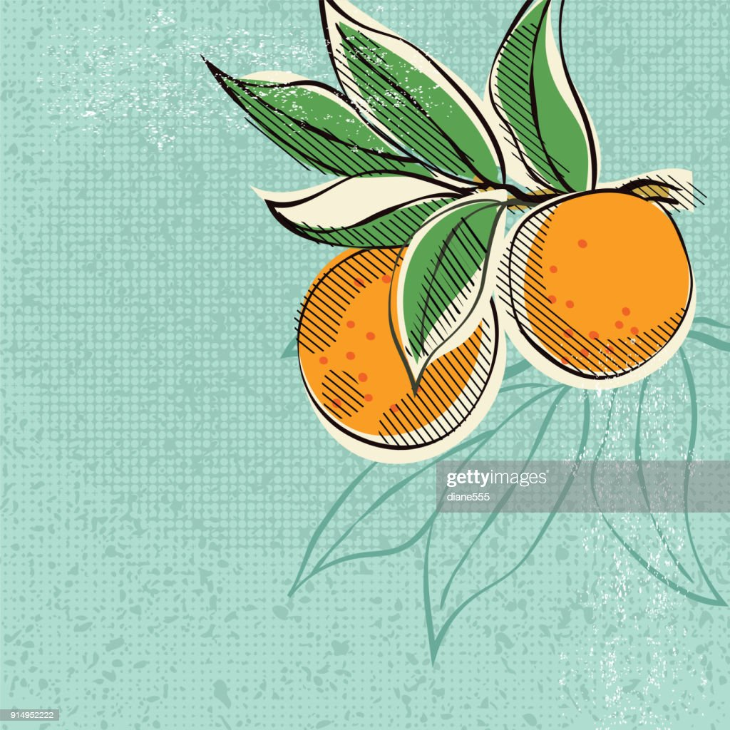 Vintage Style Advertising Oranges Poster : stock illustration