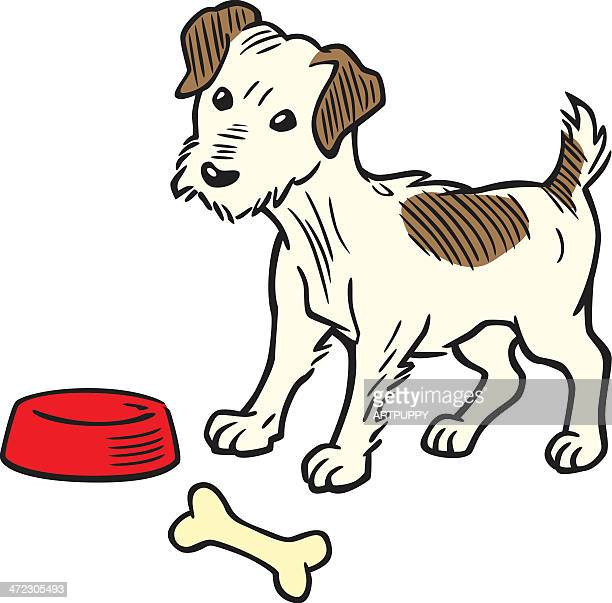 vintage terrier dog - dog bowl stock illustrations, clip art, cartoons, & icons