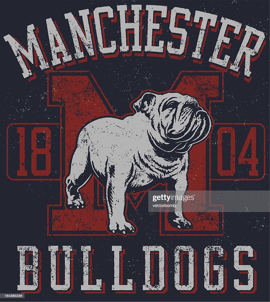 Vintage Traditional Bulldog Mascot Design