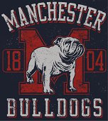 Vintage Traditional Bulldog Mascot Design
