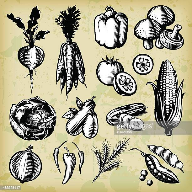 vintage vegetables set - b&w - onion stock illustrations, clip art, cartoons, & icons