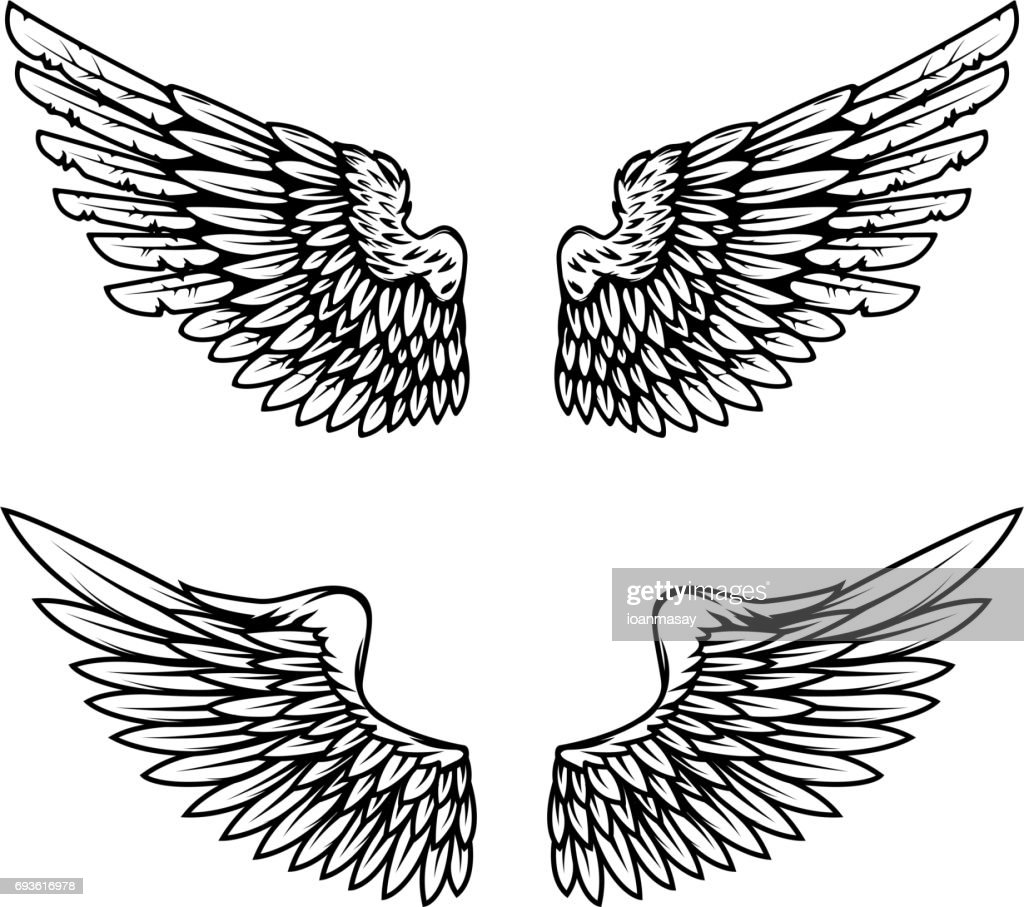 Vintage wings isolated on white background. Design elements for label, emblem, sign, brand mark. Vector illustration.