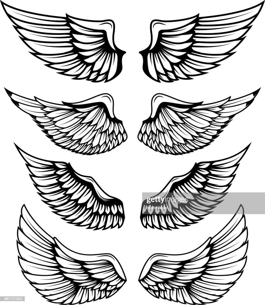 Vintage wings isolated on white background. Design elements for logo, label, emblem, sign, brand mark.