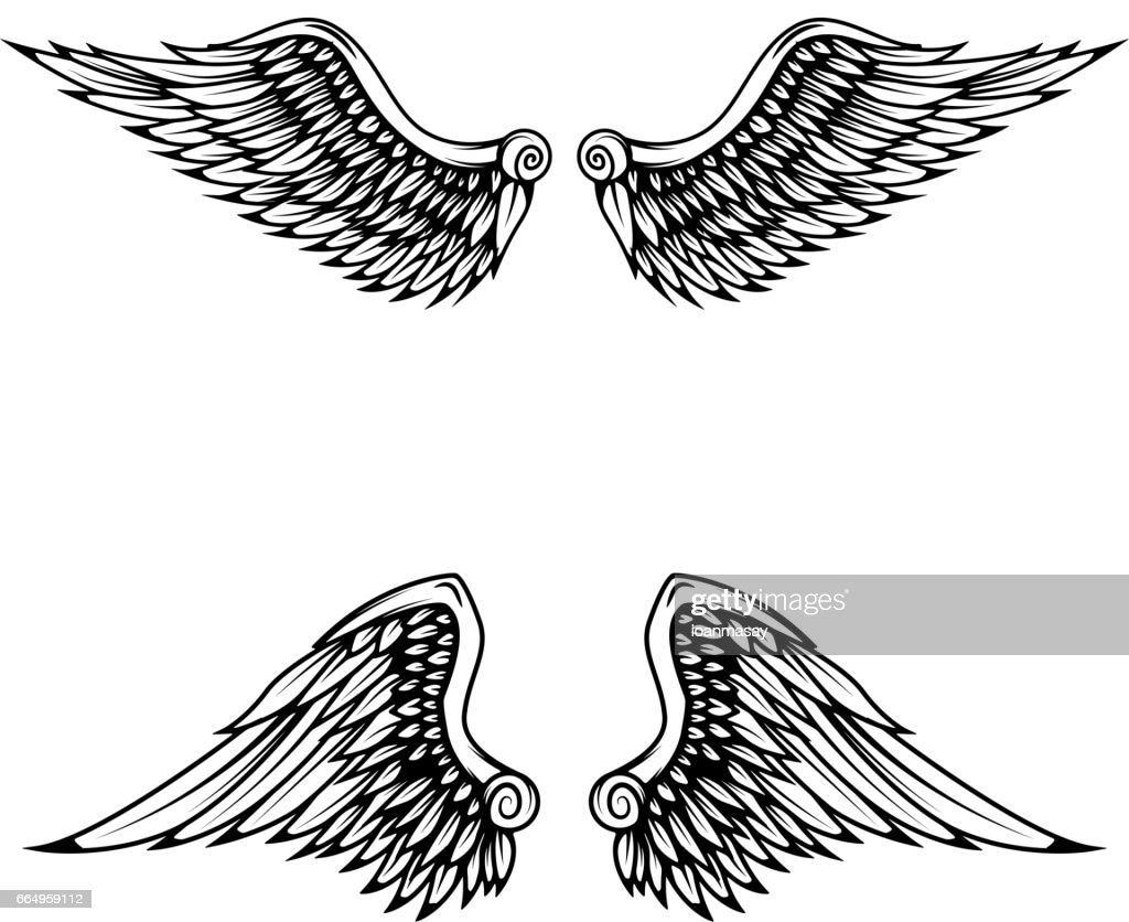 Vintage wings isolated on white background.