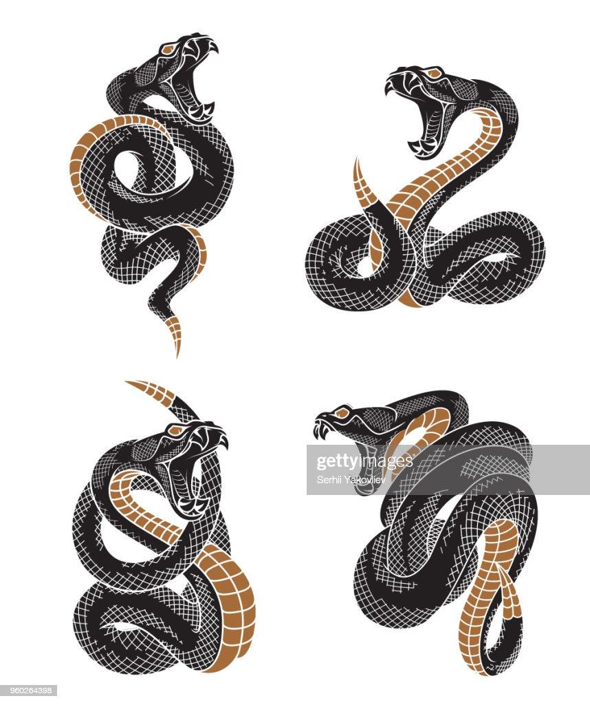Viper snake set.
