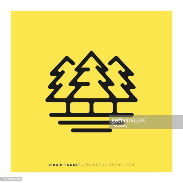 ilustraciones, imágenes clip art, dibujos animados e iconos de stock de icono de línea redondeada de bosque virgen - valle