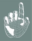 Virtual Hand Pointing
