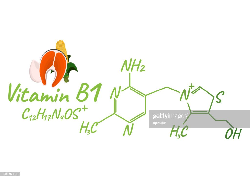 Vitamin B1 with Food Label and Icon. Chemical Formula and Structure Logo. Vector Illustration