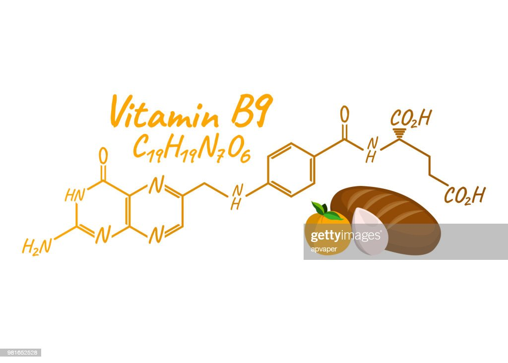 Vitamin B9 with Food Label and Icon. Chemical Formula and Structure Logo. Vector Illustration