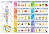 Vitamin rich food icons. Healthy eating vector icon set, text lettering logo, isolated background. Diet Infographics diagram flyer design. Table illustration, human health body, meal banner