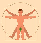 Vitruvian Man, flat