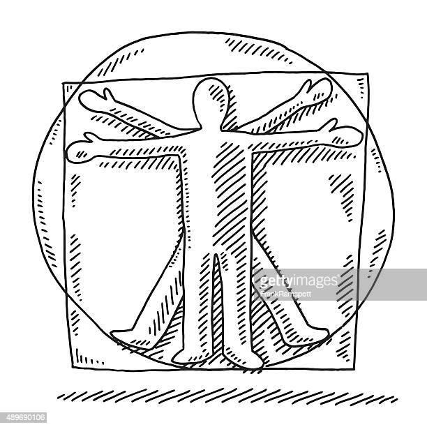 Vitruvian Man Human Proportions Drawing