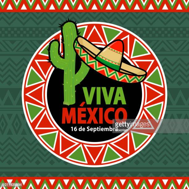 viva mexico cactus & sombrero - blanket texture stock illustrations, clip art, cartoons, & icons