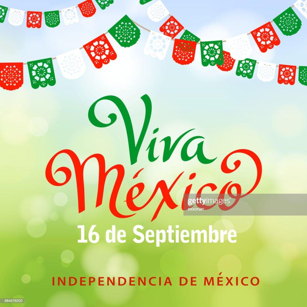 Viva Mexico Papel Picado