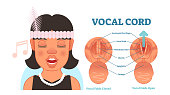 Vocal cord anatomy vector illustration diagram, educational medical scheme.