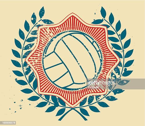 volley ball emblem - sports organization stock illustrations, clip art, cartoons, & icons