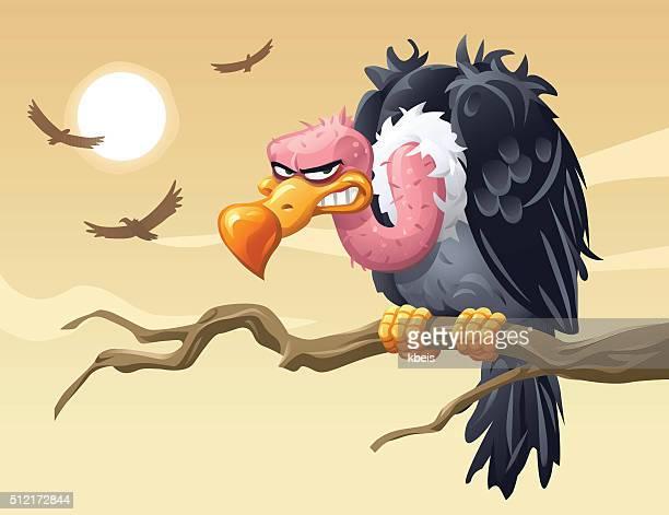 Os abutres