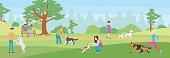 Walking dogs in park.