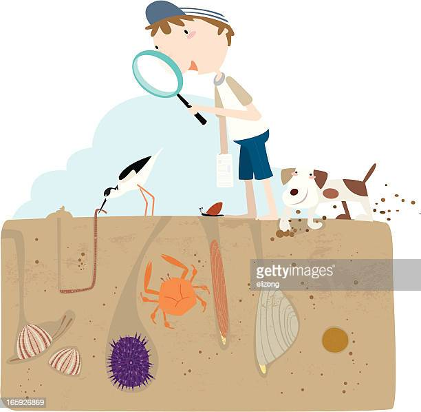 walking the sands - buried stock illustrations, clip art, cartoons, & icons