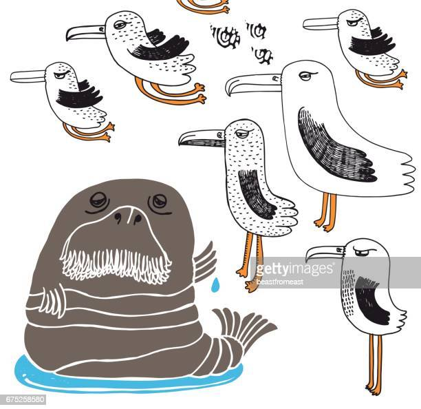 walrus and seagulls - puddle stock illustrations, clip art, cartoons, & icons