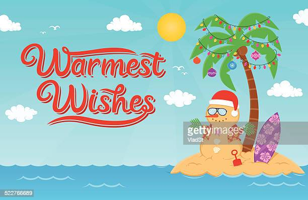 warmest wishes for christmas and new year holidays - hawaiian shirt stock illustrations