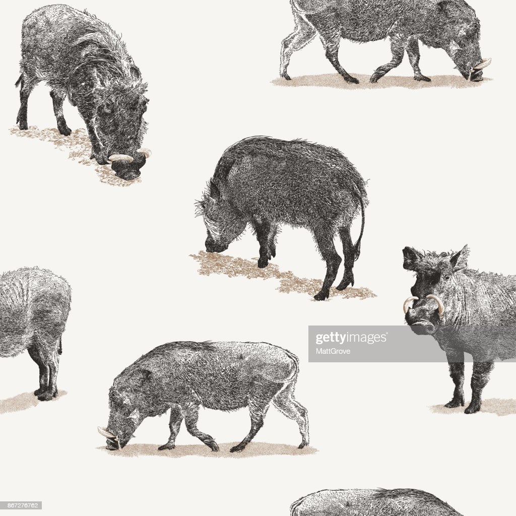 Warthog Repeat Pattern