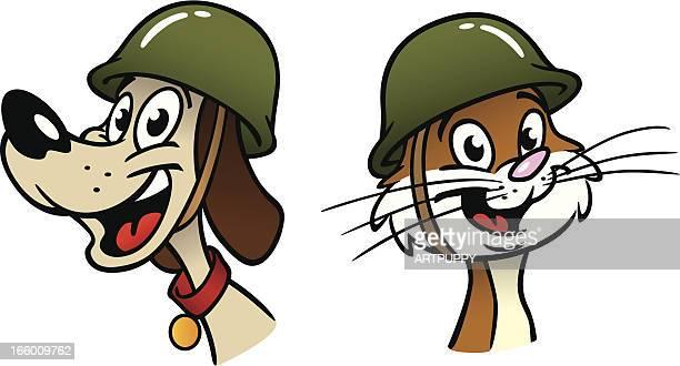 dog cat in helmet