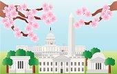 Washington DC Landmarks with Cherry Blossom Vector Illustration