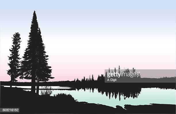 stockillustraties, clipart, cartoons en iconen met washington lakeshore - meeroever