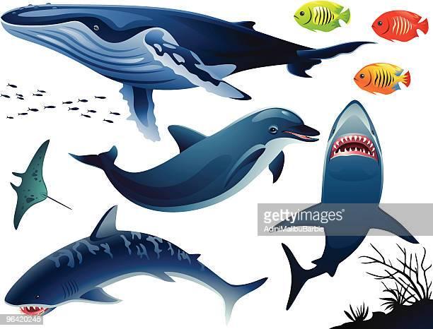 Water Animals Set
