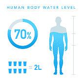 Water Percentage of human body illustration, Chart