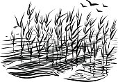 Water waves and aquatic plants; reed or cattails, vector.
