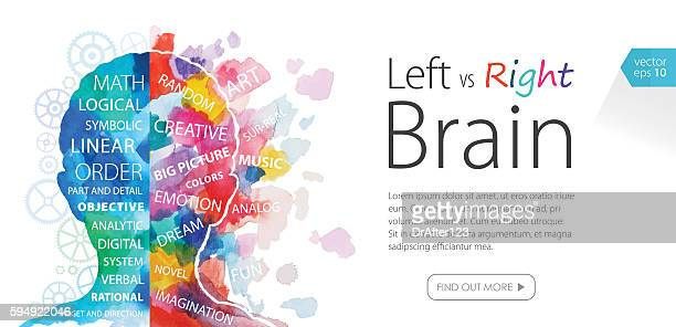 watercolor banner left vs right brain - emotion stock illustrations