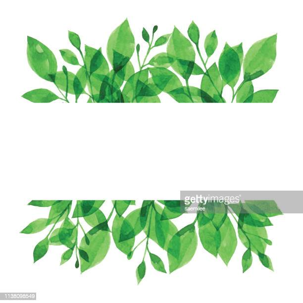 watercolor banner with green branch - springtime stock illustrations