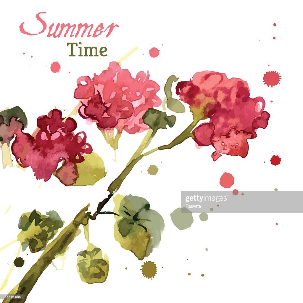 Watercolor blooming geranium