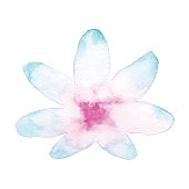 Watercolor Blue and Pink Flower