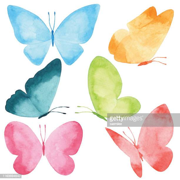 watercolor butterflies - springtime stock illustrations