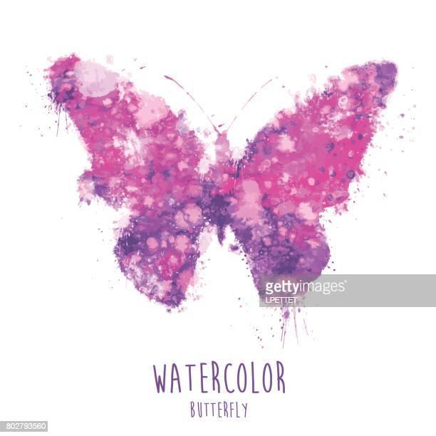 ilustrações, clipart, desenhos animados e ícones de aquarela borboleta - ilustração - lepidóptero