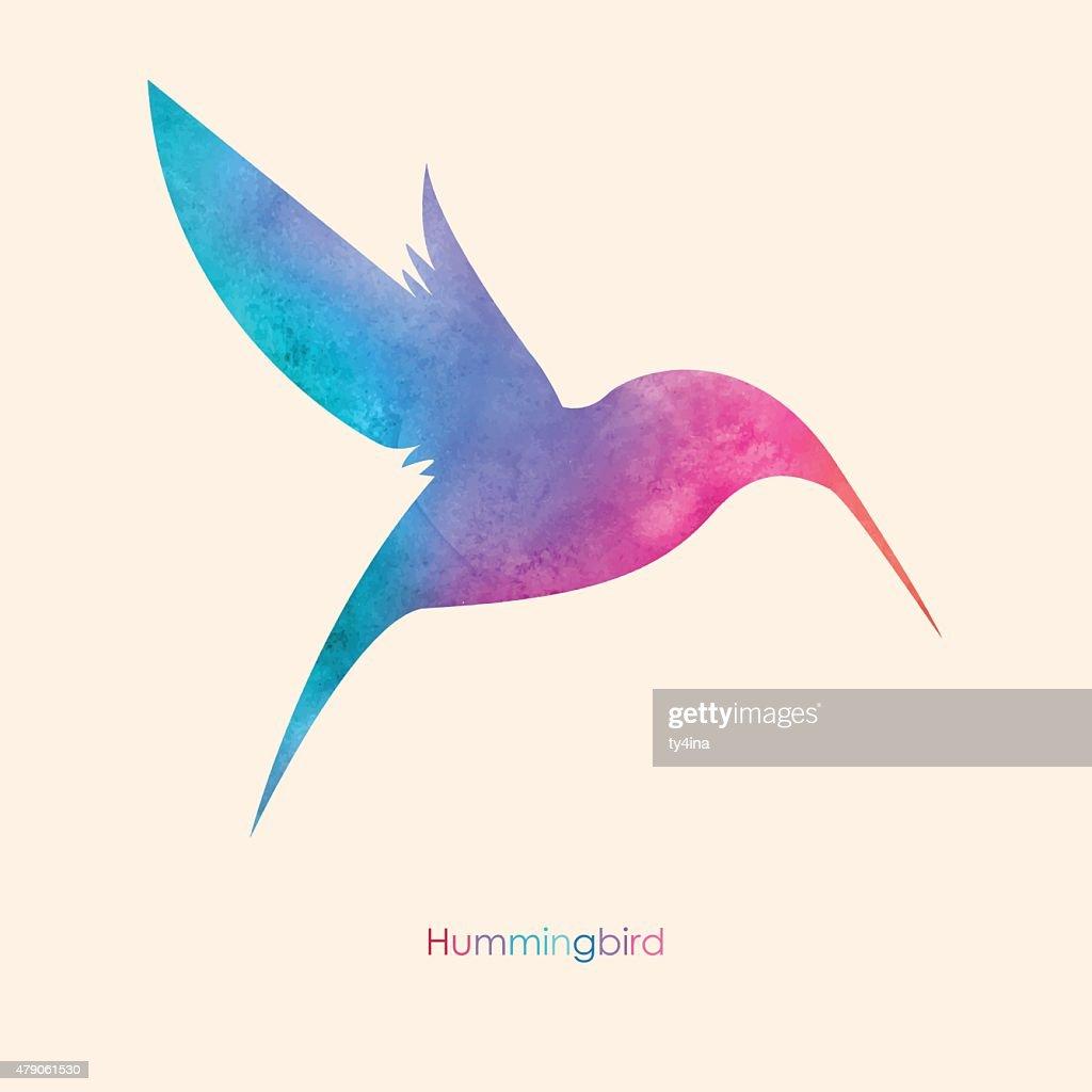 Watercolor colorful  bird. Watercolor painting