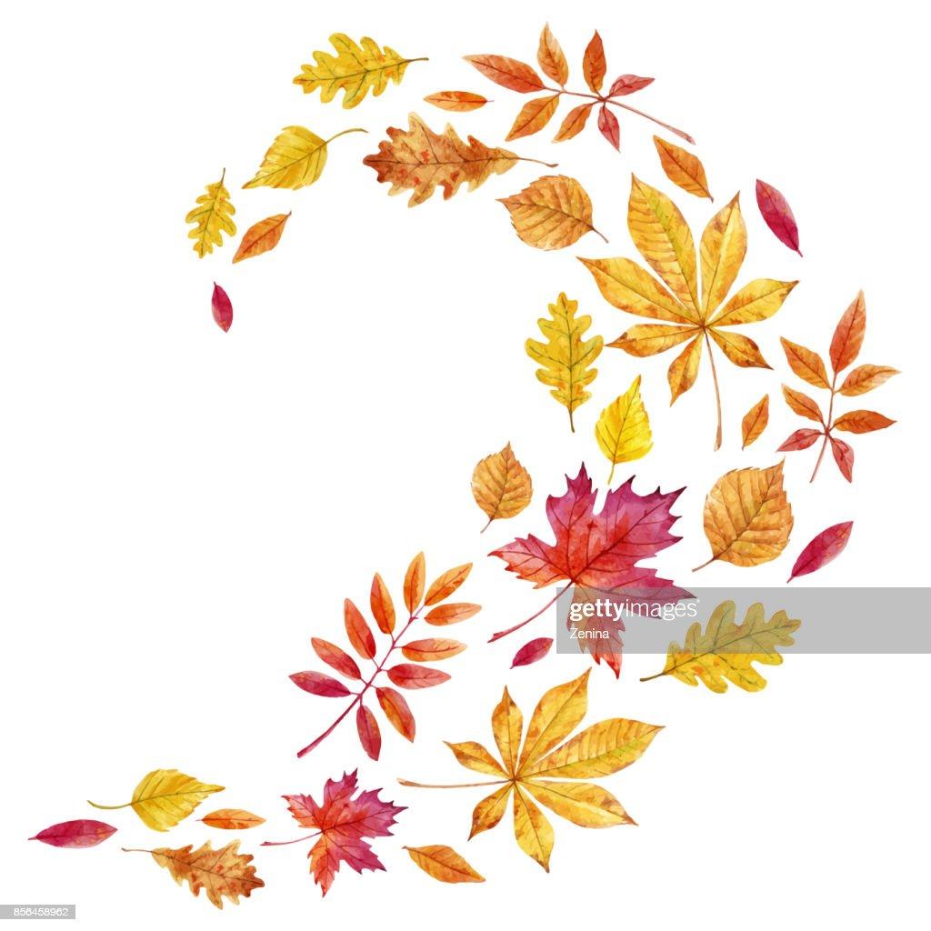 Watercolor fall leaves vector set