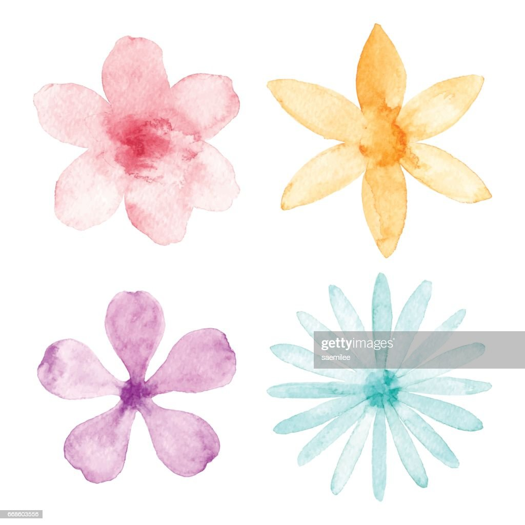 Watercolor Flowers : stock illustration